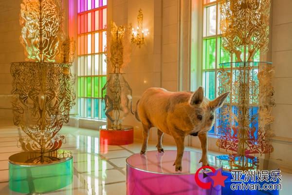 邬建安×汪天稳《仙人的树林》在震旦博物馆开幕