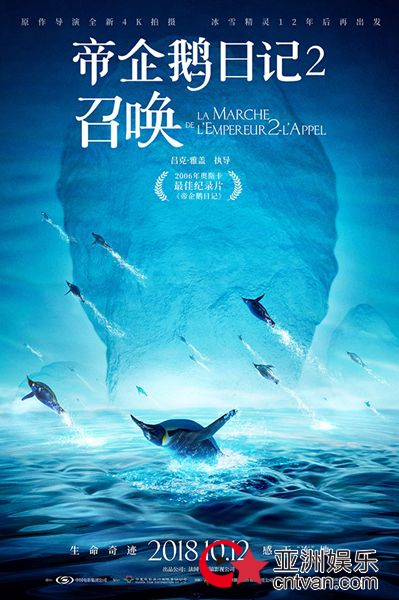 《帝企鹅日记2》追随神秘召唤踏上旅程,江一燕赞美生命力量