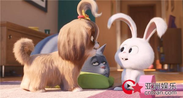 《爱宠大机密2》发布小白角色预告 奶凶升级搞怪爆笑