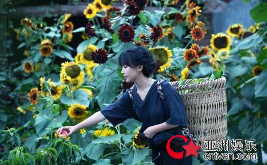 央视评李子柒为何火遍全球 讲好了中国文化和故事
