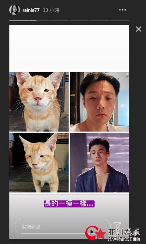相爱相杀!杨丞琳认证李荣浩撞脸猫咪:长得一模一样