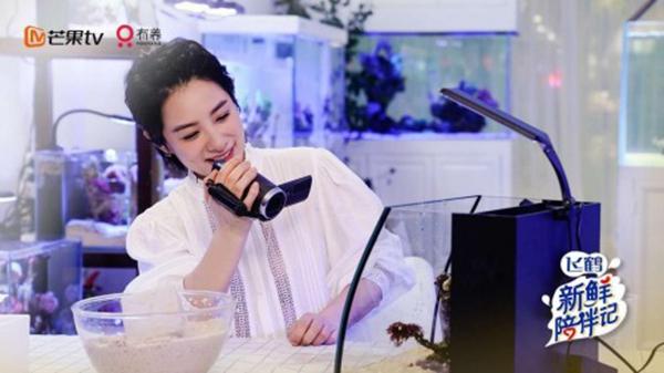 《新鲜陪伴记》 引发2亿微博关注 二胎妈妈刘璇亮相收官期