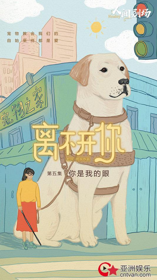 爱奇艺纪录片《离不开你》持续催泪 疫情下的留守宠物现状引发关注