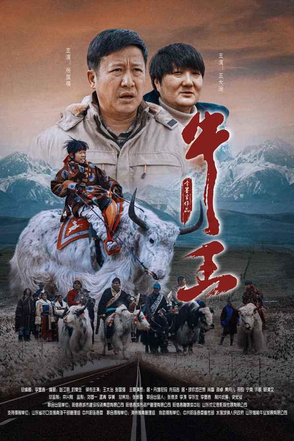 电影《牛王》10月18日温暖上映 藏族少年千里夺牛开启治愈之旅